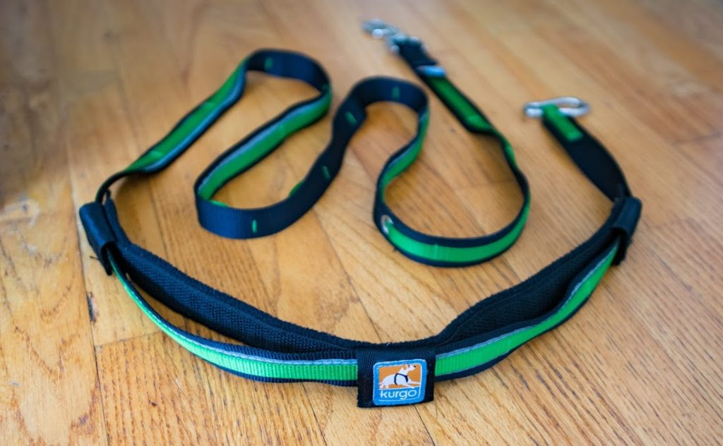 kurgo-quantum-leash-3