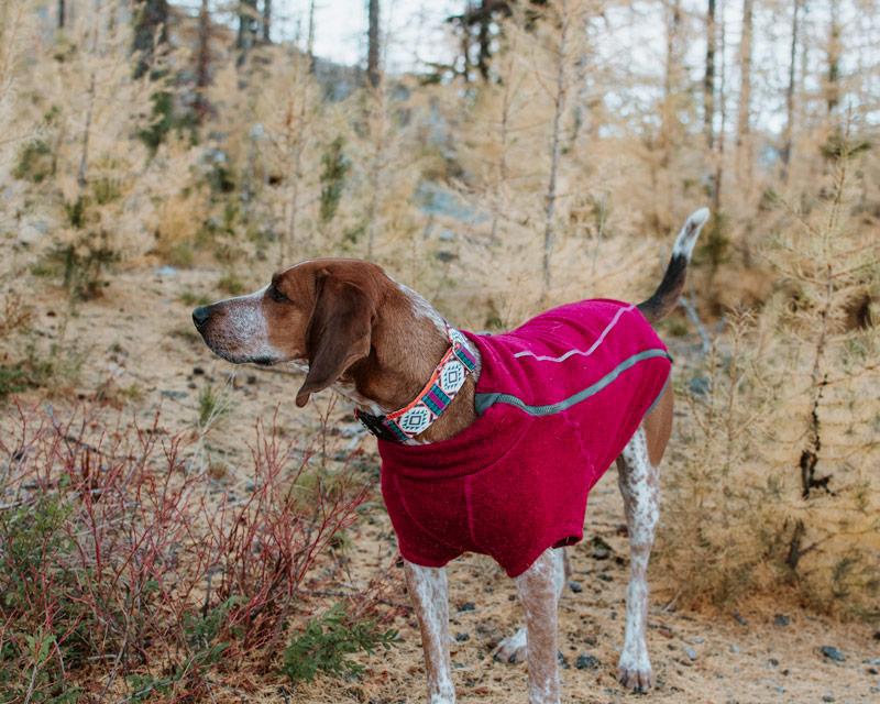 Ruffwear Fernie Fleece Dog Sweater